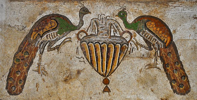 byzantine_church_in_nahariya_-_peacocks_mosaic1