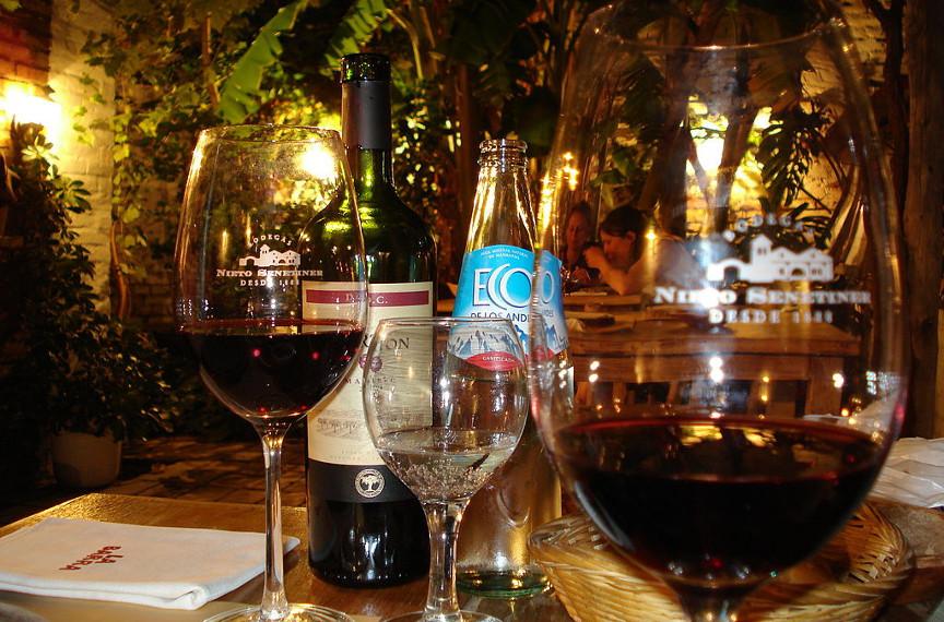 malbec wine by ricardo martins